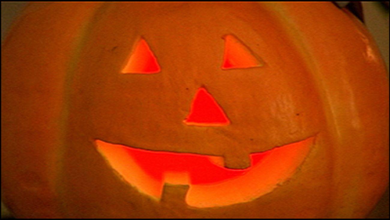 Halloween Feest Almere.Omroep Flevoland Nieuws De Vijf Leukste Halloween Uitjes